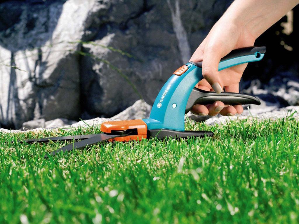 Уход за газоном: вычесывание, аэрация, подкормка, мульчирование, стрижка